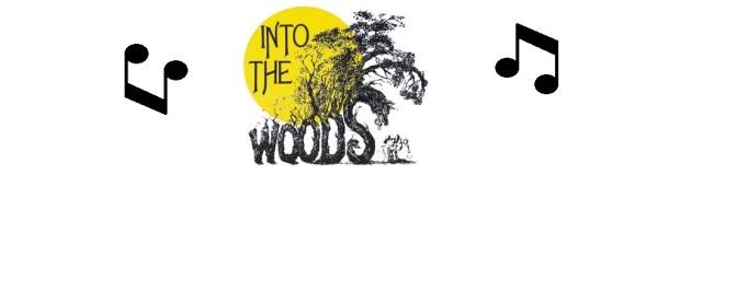 201004061250000.intothewoods