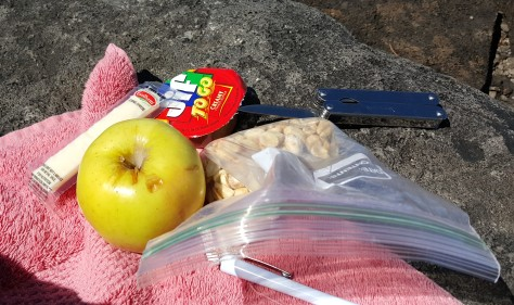Picnic Lunch Day 2