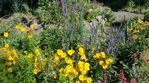 The Garden earlier this spring