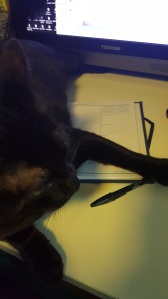 Midnight Monster has been helping me with getting thing son my calendar.