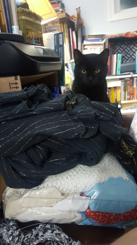 Midnight Monster oversee's my costume prep