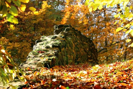 autumn-1797527_1920